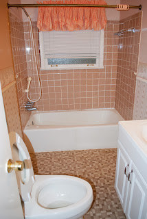 Lake House Bath Before
