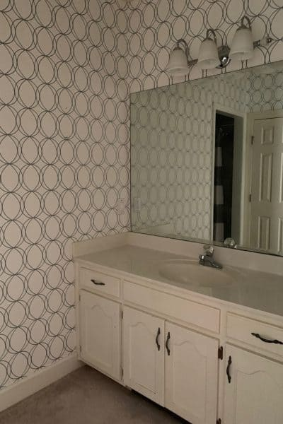 Jack and Jill Bathroom Makeover-Week 3