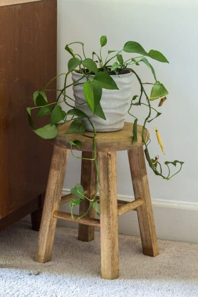 How to make a small stool from a thrifted bar stool.