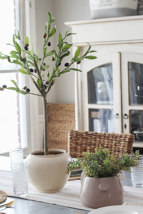 Olilve tree for a spring tablescape