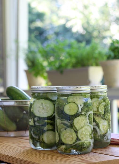Easy refrigerator pickle recipe